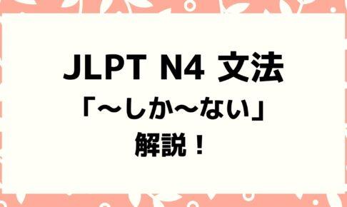【文法解説】日本語能力試験JLPT N4「~しか〜ない」例文・導入・誤用例も!