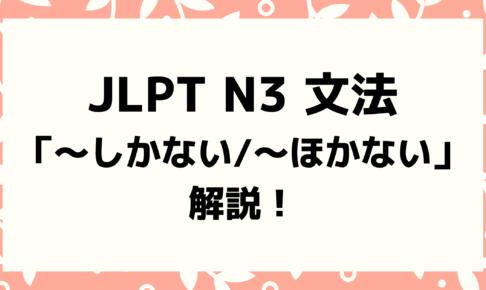 【文法解説】日本語能力試験JLPT N3「~しかない/〜ほかない」例文・導入・よく似た文法も!